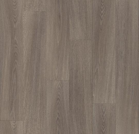 Sarlon Wood xl modern