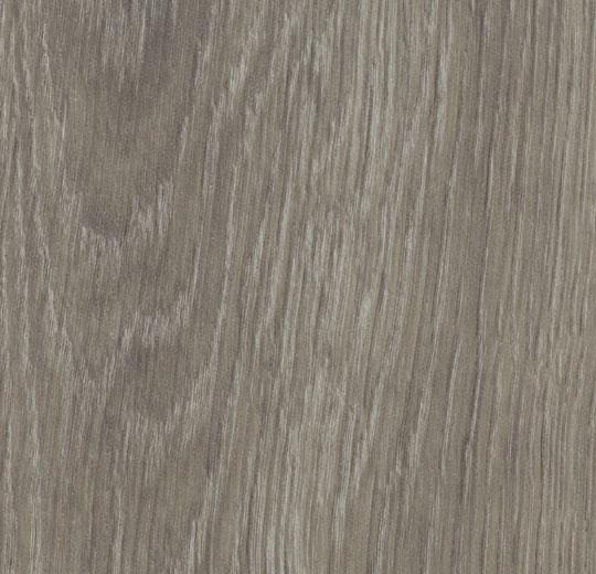 cc60280 grey giant oak